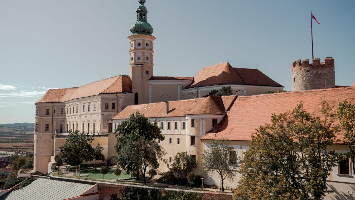Pohled z vyhlídkové věže kostela sv. Václava